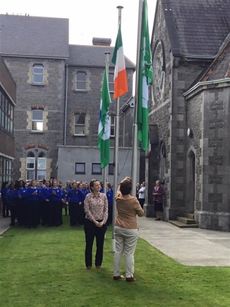 Flag 2 green schools.jpg